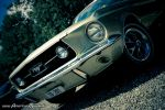 ClassicStang by AmericanMuscle