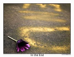 In the End by lukeroberts