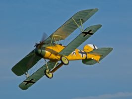 Albatros Replica Old Warden by davepphotographer
