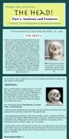 Head Tut Part 1: Features by travelingpantscg