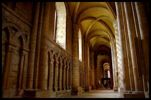 Columns and Vaults by rorshach13