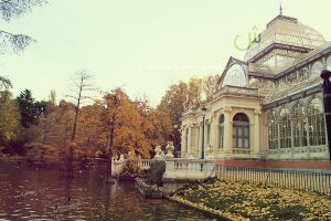 CRYSTAL PALACE II by a-moora-h