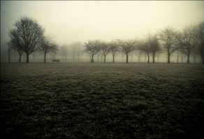 The Meadows in February by tamaskatai
