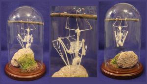 Articulated Bat Skeleton display by BluesCuriosities