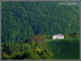 CAUDINO DI ARCEVIA (AN) - SURROUNDED BY THE GREEN by MarcoLorenzetti