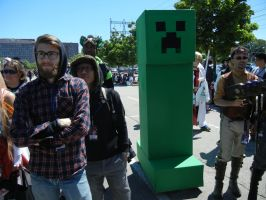 Anime North 2013 - Minecraft Cosplay by jmcclare