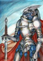 knight of Palaven by Laterne-Magica