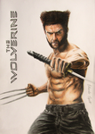 The Wolverine (Drawing) by EduardoCopati