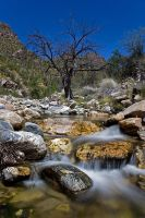 Sabino Canyon by ariseandrejoice