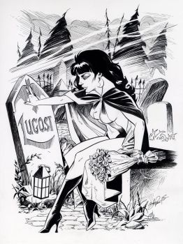 Vampirella inks for Big Wow by andypriceart
