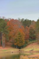 Autumn on the Summer's Plantation by Rjet33