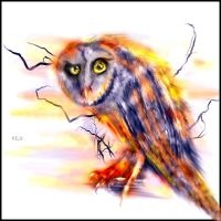 owl by L-A-Addams-Art