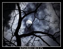 Kindred Moon by theblueberrybush