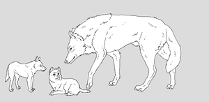 Father and pups by WhiteWolfCrisis13