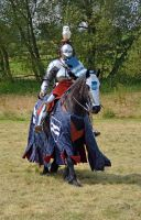 Kenilworth Castle Joust 2014 (69) by masimage