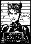 Catwoman sketch card by PaulHanley