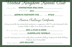 RBK A Star is Born - Reserve Challenge Certificate by TheChiefofTime