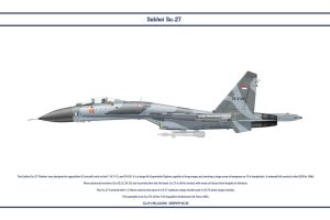 Su-27 Indonesia 1 by WS-Clave