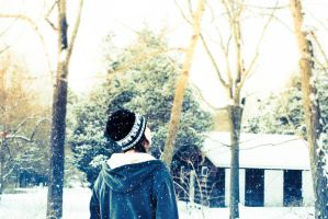 moments spent listening to snowfall by SageFillyLuna