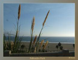 Palisades Park by GreySkwerl