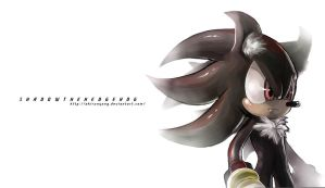 Sonic :: Shadow the Hedgehog 2 by AkiruNyang