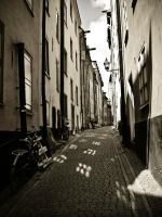 Alley in the old town by Kor-Malkor