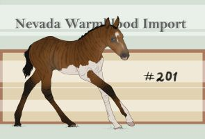 Nevada Warmblood 201 by BRls-love-is-MY-Live