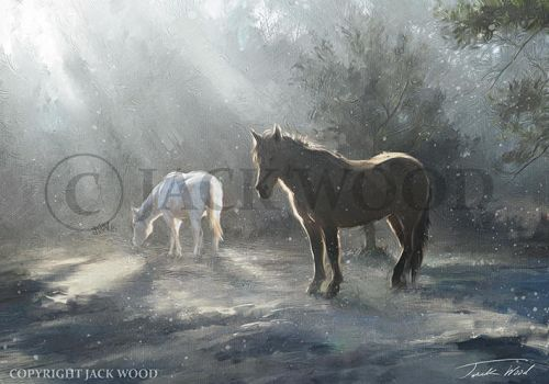 Horses in Winter by Jack-Wood