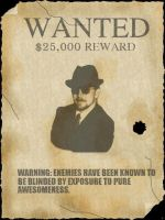 Wanted Poster by rangerkom