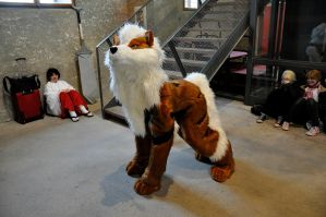 animuc2014: Arcanine by TheNikodemus