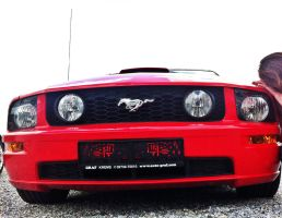 Le Mustang GT by CynderxNero