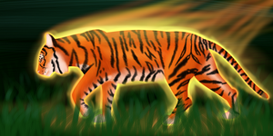 Tyger, Tyger, Burning Bright by Kashi-NG