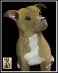 Pitbull Terrier by PulsingLights