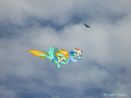 In the sky by WonderDashie