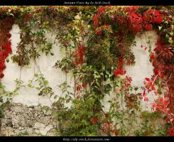 Autumn Vines BG 05 by ALP-Stock