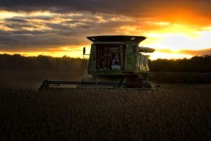 Harvest Sunset 8 by cthacker