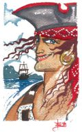 Quick Pirate Painted by DonnaBarr