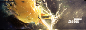 Zapdos by DuffCD