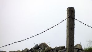 Barbed wire -1 by moslem-d
