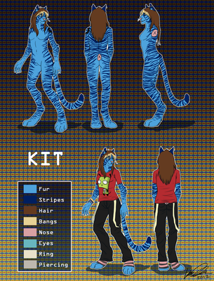 [C] Kit Refrence I By Tamera_Ali by Bluetigerkitty2012