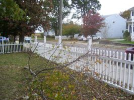 Damage to the front fence by Hannah2070