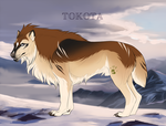 Rhune 1815 by TotemSpirit