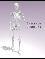 Skeleton [ DOWNLOAD ] by Aia-Aria