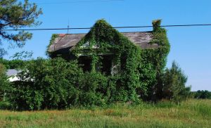 Abandoned Farmhouse by timid-wolf