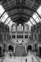 National History Museum by adamstephensonscfc