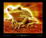 Solar Toad by TheLoveTrain
