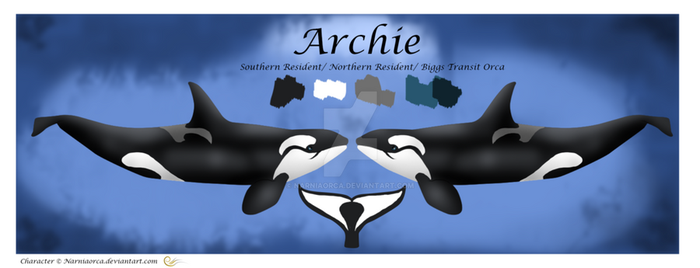 Archie Reference Sheet by NarniaOrca