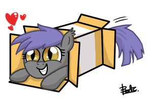 Midnight Blossom in box by benkomilk