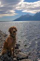An Echo In The Tetons by dunklerJazz