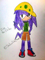 Dion the Echidna by ShadowRules4ever